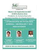 Laparoscopía en Patología Adrenal: Abordajes y Sus Indicaciones