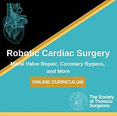 Robotic Cardiac Session 1: Building and Maintaining a Robotic Cardiac Surgery Program