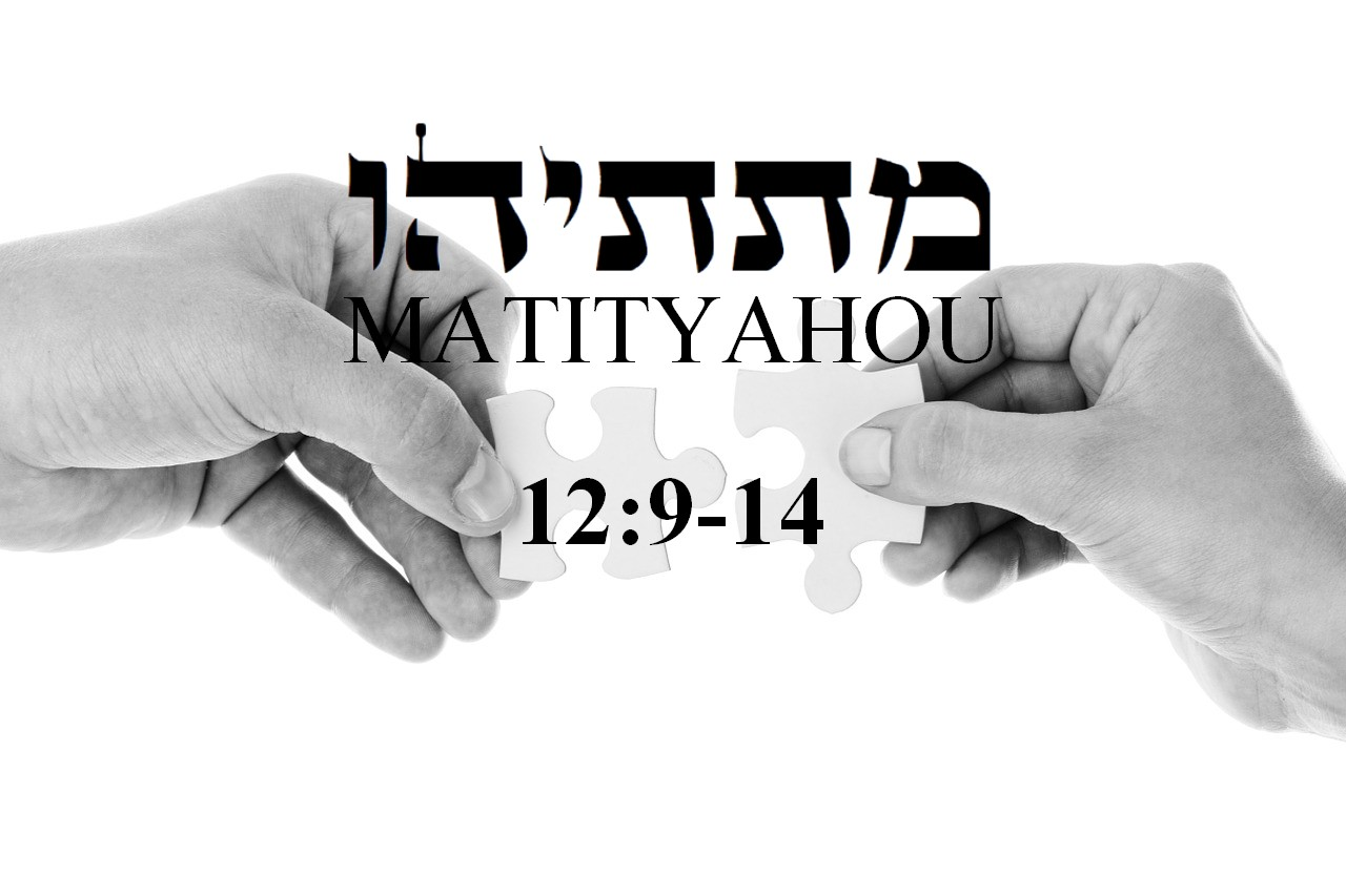 Mathieu 12 8 et 14