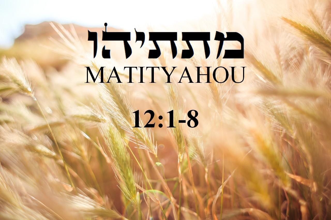 Mathieu 12 1 et 8