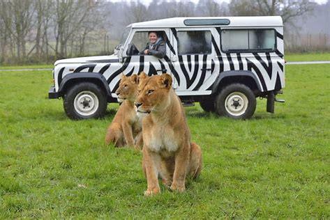 Longleat Wildlife Park