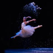 Northeastern Ballet Theater
