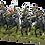 Thumbnail: BRITISH HOUSEHOLD CAVALRY