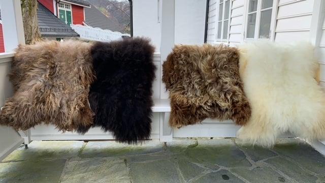 Saueskinn fra Øvre-Eide Gård i Bergen