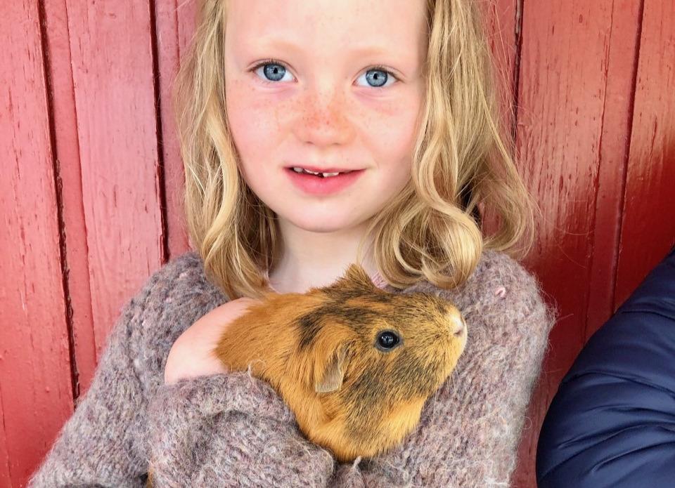 Bursdag for barn på gård