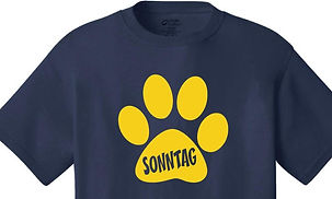 Front of Spirit shirt_edited.jpg