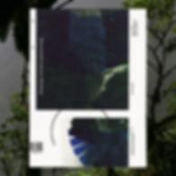 dach&zephir_Field_Essays 55.3_(couvertur