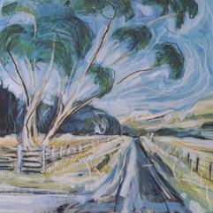 Ardfern Eucalyptus