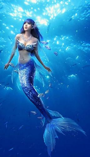ws_Mermaid_Fishes_&_Ocean_640x960.jpg