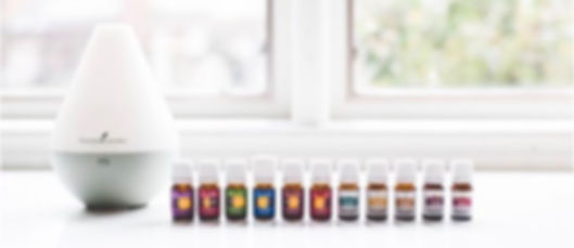 AYS Up North partners with Young Living Essential Oils