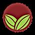 kisspng-lembaga-koko-malaysia-logo-cacao