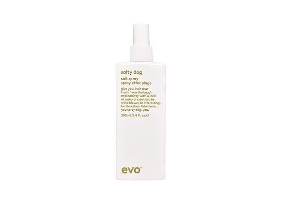 Evo Salty Dog - Salt Spray
