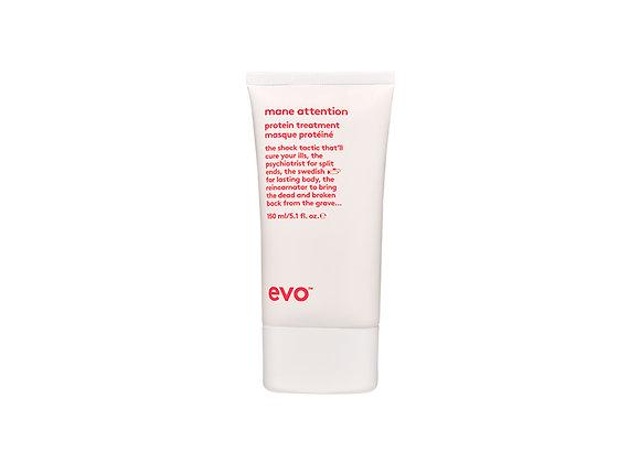 Evo Mane Attention - Protein Treatment