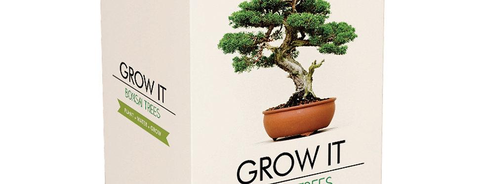 Grow Your Own Bonsai Trees