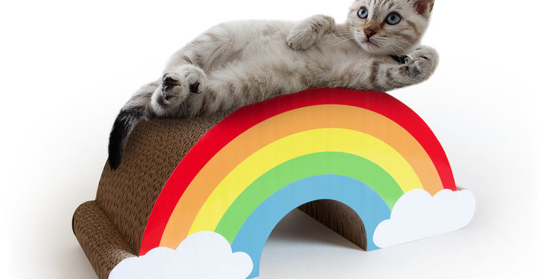 Cat Scratch Rainbow