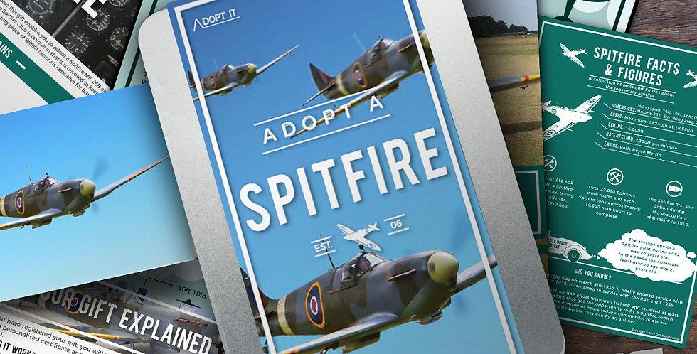 Adopt a Spitfire