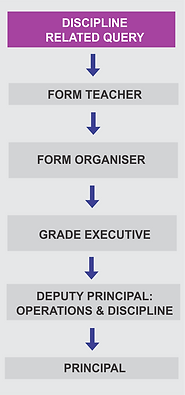 Reporting Structure - Discipline.png