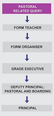Reporting Structure - Pastoral.png