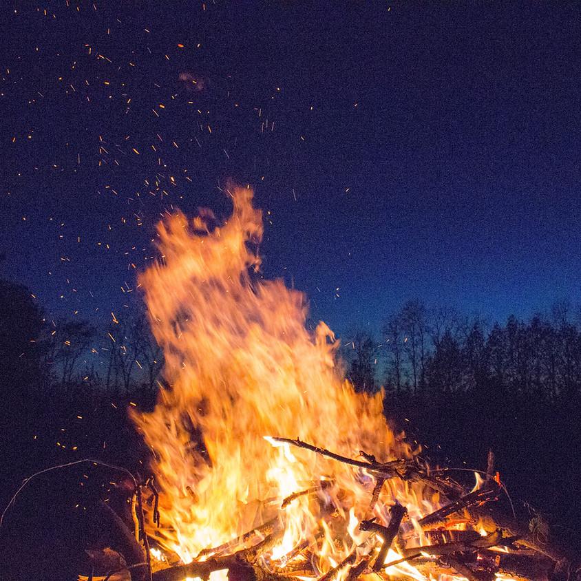 Tree Burning
