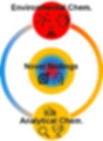 Analytical and environmental chem.jpg