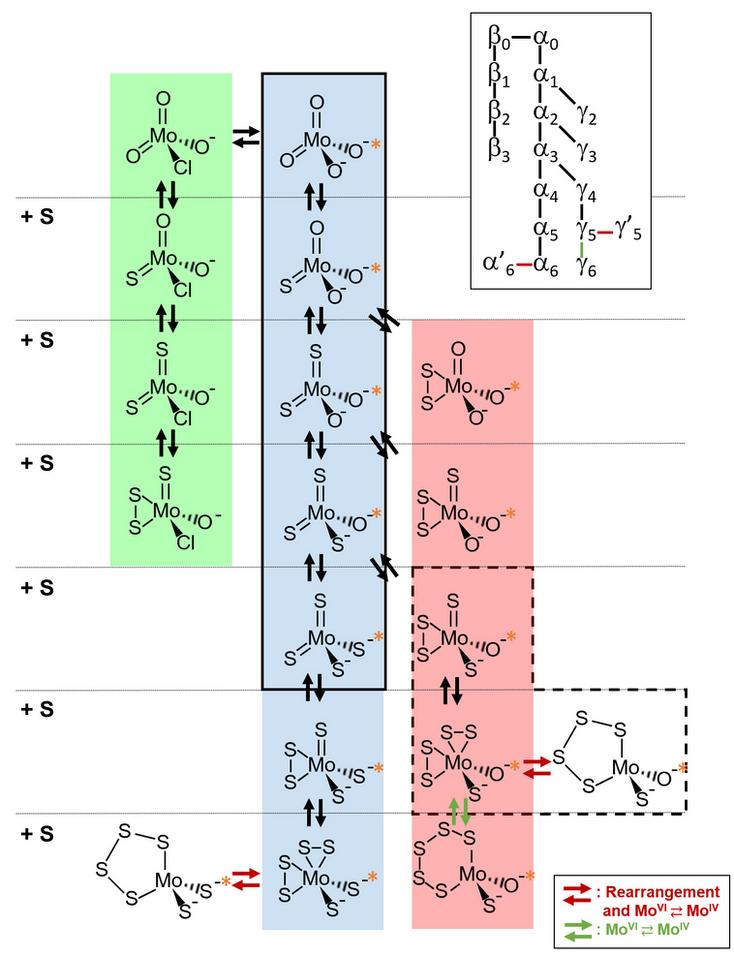 Dang et al. Figure 2.tif