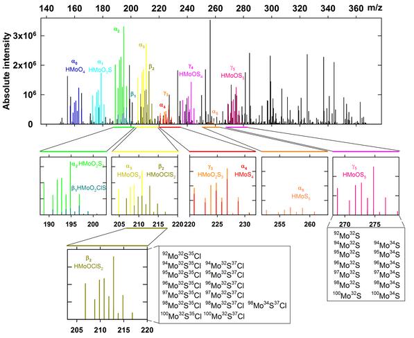 Dang et al. Figure 1.TIF