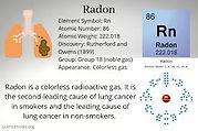 radon lungs.jpg