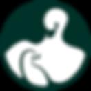 Cygnet Logo-no text.png
