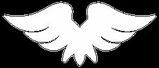 big wing.webp