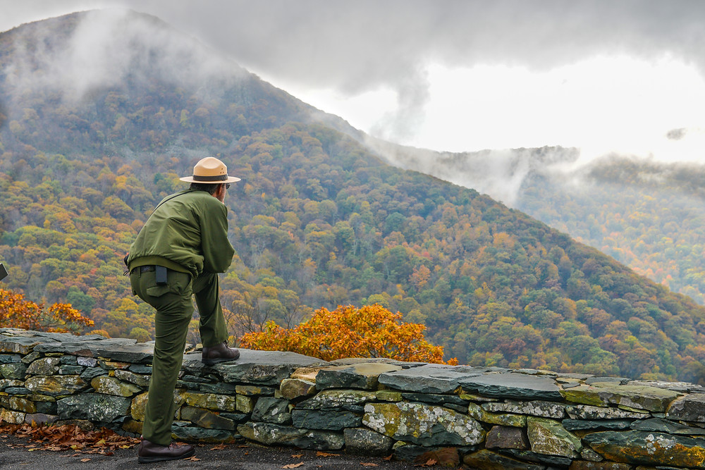 A Shenandoah National Park Ranger enjoying the leaves changing colors in the fall.