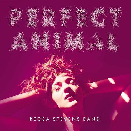 Perfect Animal CD/Vinyl