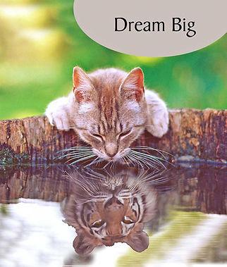 N511_Dream_Big.jpg