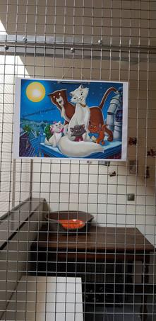 Aristocats Family Room