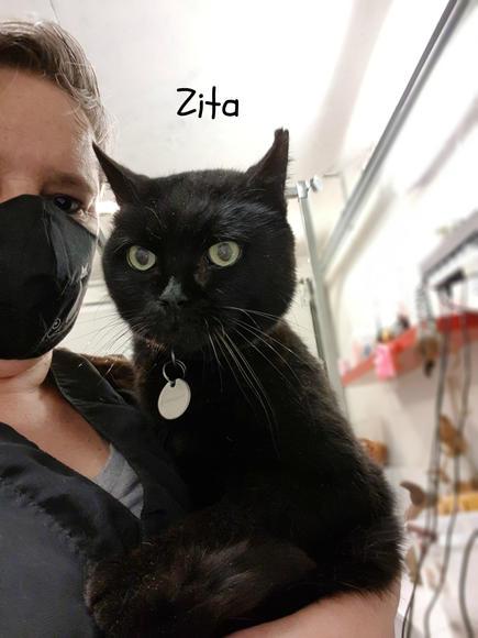 Zita - Paula.jpg