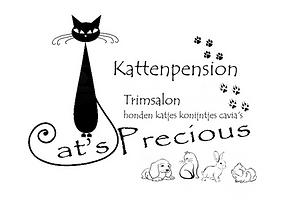 Cat's Precious3.png