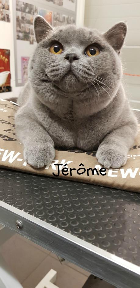 Jérôme - BK.jpg