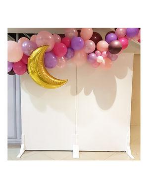 Backdrop White Wall - Balloon Garland Pi