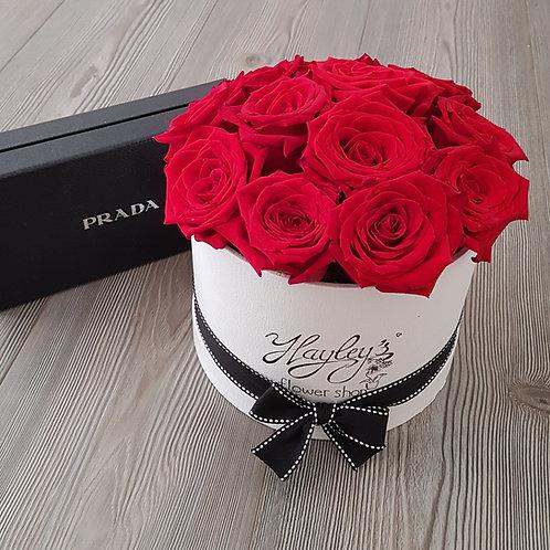 Fancy Pants Roses (S)