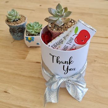 Succulent Gift Box.jpg