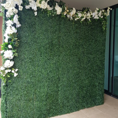Hedge Wall Hire