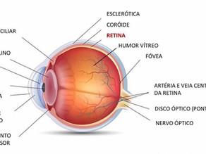 """O olho - """"Causa inveja ao cientista especializado em computadores"""""""
