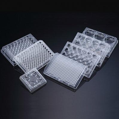 Microplaca para cultura de células -96 poços