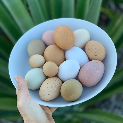 Farm Fresh Eggs - 1 Dozen