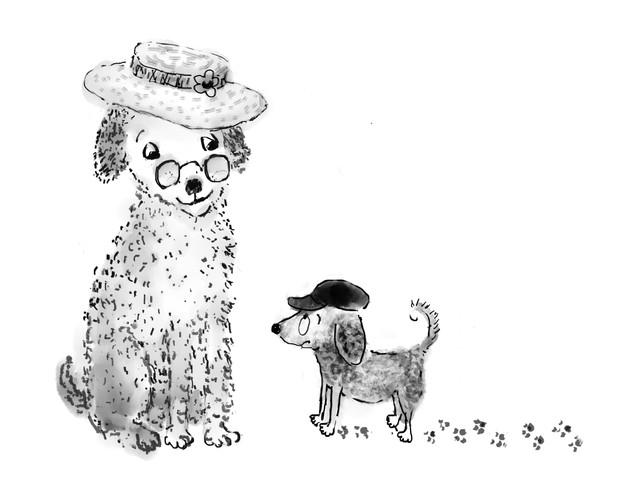 """""""Doggie Teacher"""""""