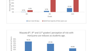 Misperceptions of Wayzata High School Students Marijuana Use