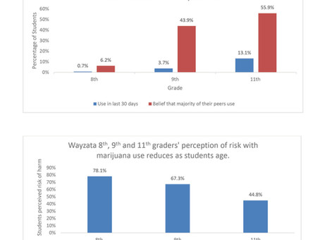 Misperceptions of Wayzata High School Students Marijuana Use