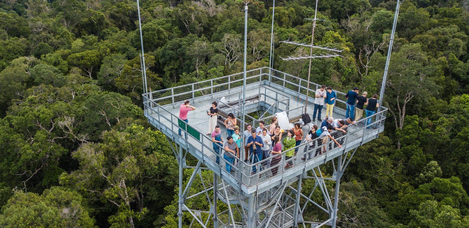 Academia Amazonia Ensina Torre de observ