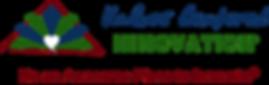 VCI logo.png