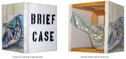 BRIEF CASE