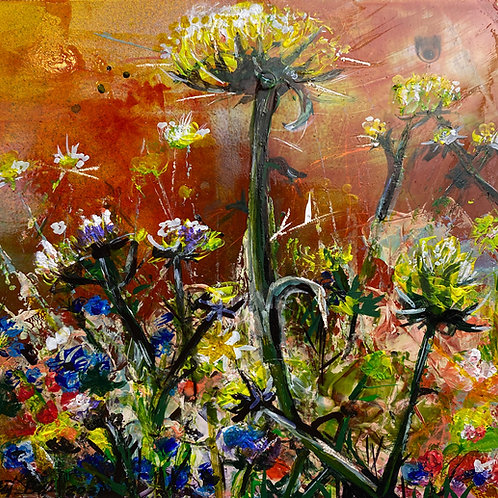 Thistles in the meadow